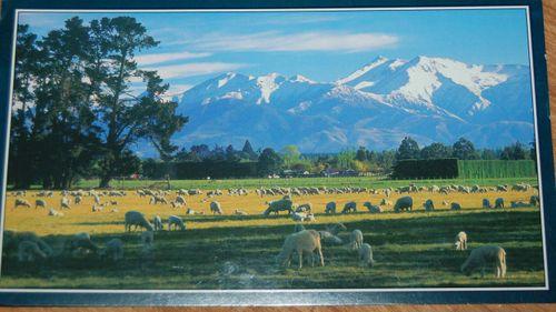 Posrcard 3 - New Zealand