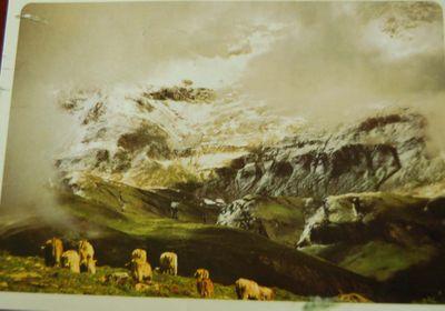 Postcard #67 - Switzerland