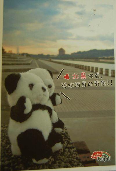 Postcard #64 - Taiwan