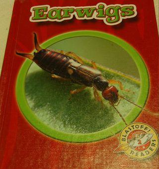 Earwig book